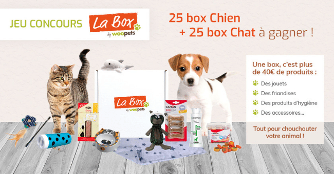 concours box chein chat woopets