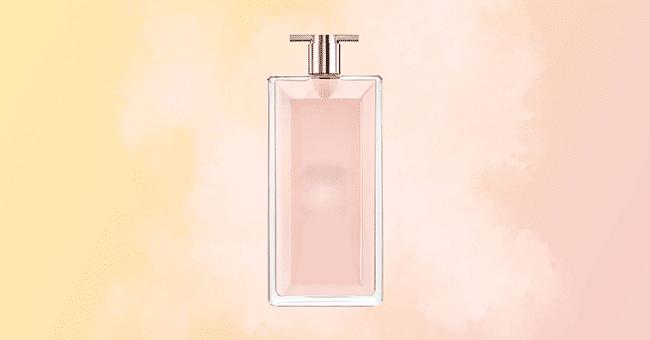 support parfum