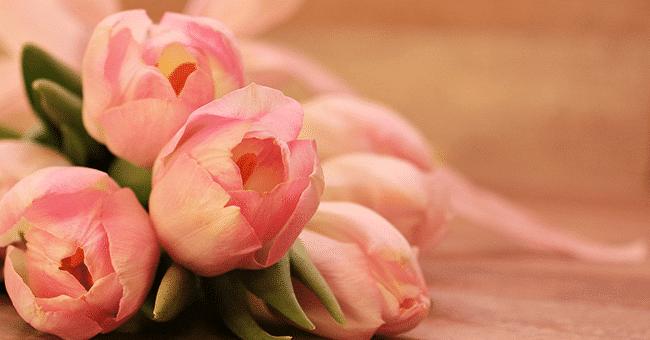 concours bouquets fleur