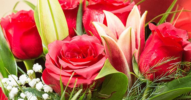 concours fleur