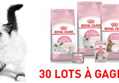 alimentation chat royal canin offert