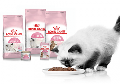 royal canin concours Copie