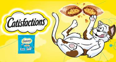 nourriture chats