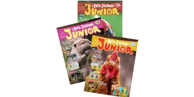 magazine junior