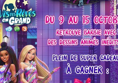 barbie gulli concours 1