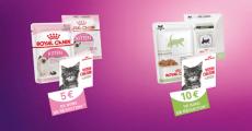 Coffret pour chaton Royal Canin gratuit sur simple demande