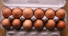 1 boîte de 12 œufs frais Casino gratuite !