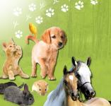 Echantillon gratuit de nettoyant Saniterpen pour votre chat/chien!