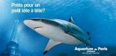 Entrées gratuites adulte pour l'Aquarium de Paris !