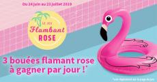 A gagner : 90 bouées Flamant Rose
