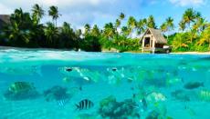 A gagner : 1 voyage à Bora Bora, 4 aspirateurs Dyson…