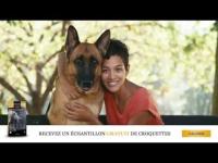 Échantillons gratuits de croquettes pour chiens ! 0 (0)