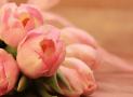En jeu : 50 bouquets de fleurs