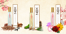 Tentez de gagner un parfum Nox de votre choix 0 (0)