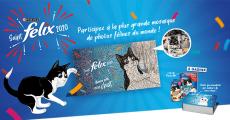 Tentez de remporter 100 lots d'un an de croquettes Felix pour chat