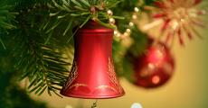 200 sapins de Noël Treezmas offerts