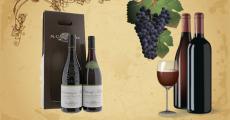 Coffret de bouteilles de vin M. Chapoutier offert