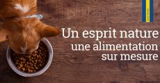 Échantillons gratuits de croquettes Husse pour chiens et chats 4.5 (25)