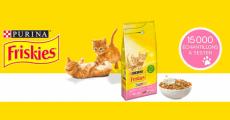 Échantillons gratuits des croquettes Friskies Junior pour chaton