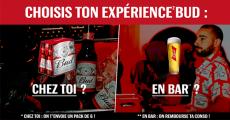 3000 expériences Bière BUD offertes (packs de 6…) 4.6 (13)