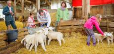 5 séjours dans une ferme pédagogique à gagner !