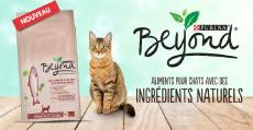 3000 packs alimentaires pour chat Beyond Purina (+échantillons gratuits)
