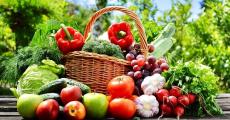 En jeu : 10 blenders, 30 paniers de fruits et légumes et 60 livres de cuisine