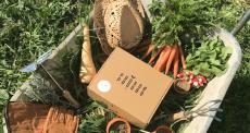 Box Pousse Pousse du mois de mai offertes