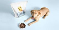 2 semaines de croquettes pour chien offertes (hors frais de port)