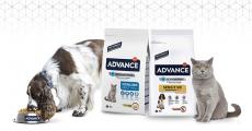 8000 sacs de croquettes Advance pour chiens et chats à tester