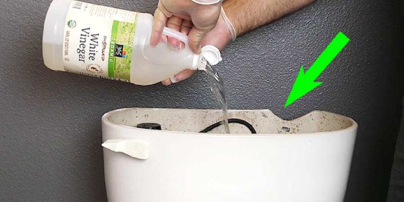 Le vinaigre blanc, votre meilleur allié pour nettoyer les toilettes !